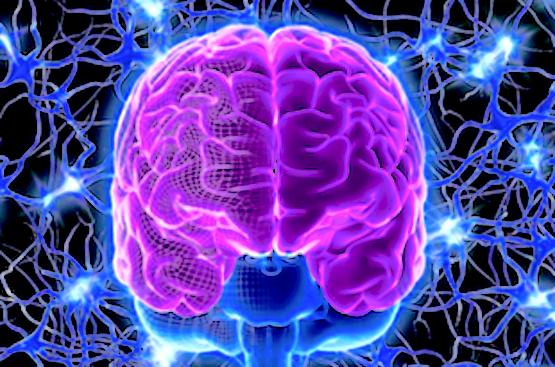 reprogram-mind-uq