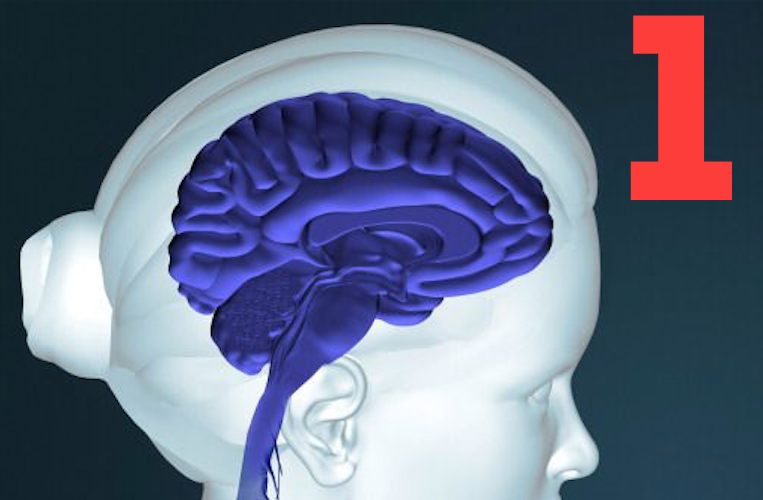 Misconception 1 about Memory Reconsolidation Process Is Triggered by Reactivating a Target Learning or Memory