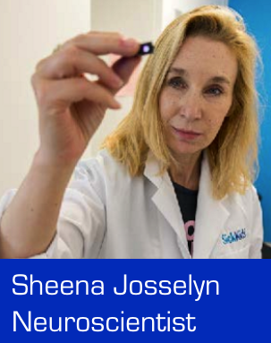 Dr Sheena Josselyn on Memory Formation and Forgetting Bad Memories